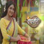 Krishnakoli 13th February 2019 Full Episode 236 Watch Online