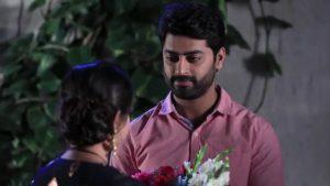 Raja Rani Colors Super 21st February 2019 Full Episode 172